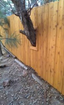 Wood Privacy Fence Company